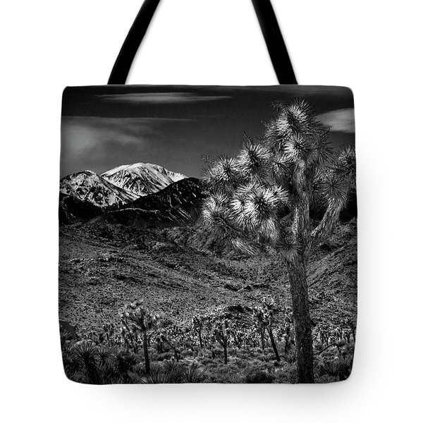 Tote Bag featuring the photograph Joshua Tree In Black And White In Joshua Park National Park With The Little San Bernardino Mountains by Randall Nyhof