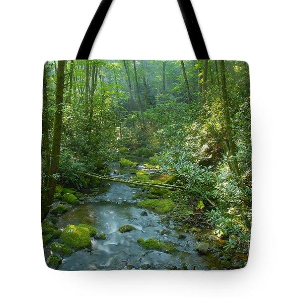 Joyce Kilmer Memorial Forest Tote Bag by David Lee Thompson