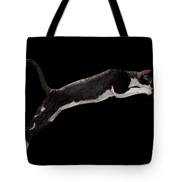 Jumping Cornish Rex Cat Isolated On Black Tote Bag