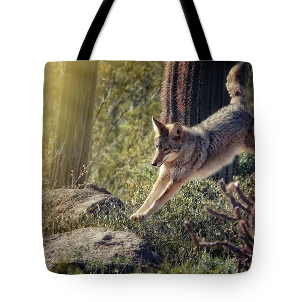 Jumping Rocks Tote Bag