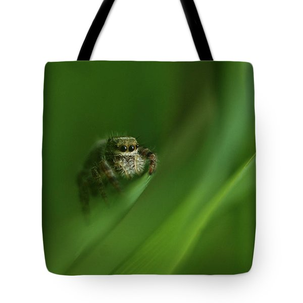 Jumping Spider Contemplating Life Tote Bag