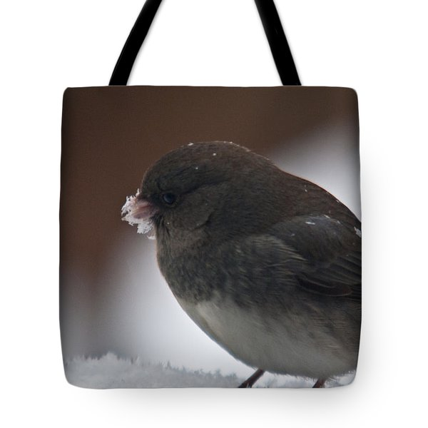 Junco In Snow Tote Bag by Douglas Barnett