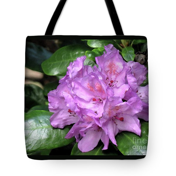 June Daphnoides Tote Bag by Chris Anderson