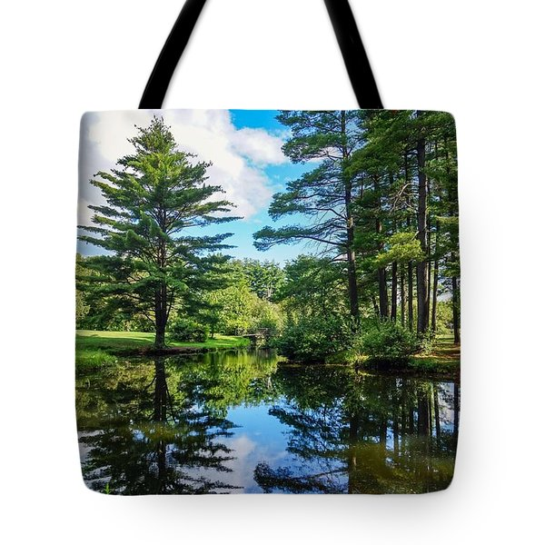June Day At The Park Tote Bag