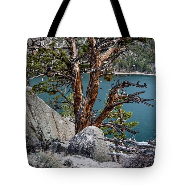 June Lake Juniper Tote Bag by Cat Connor