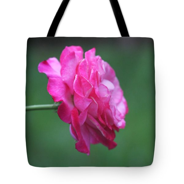 Tote Bag featuring the photograph June Rose by Vadim Levin