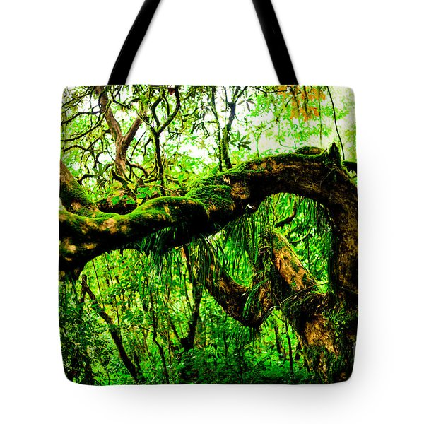 Jungle Forest Himalayas Mountain Nepal Tote Bag