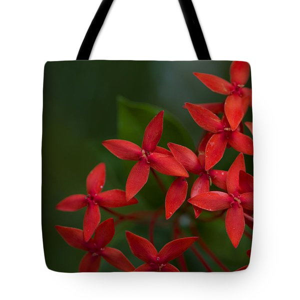 Jungle Geranium Tote Bag by Marlo Horne