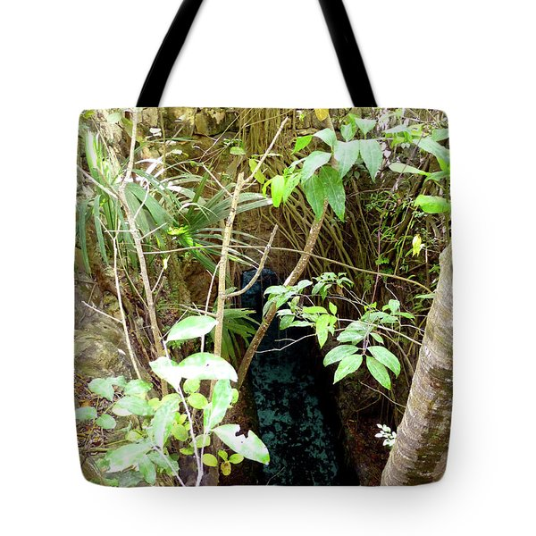 Tote Bag featuring the photograph Jungle Stream by Francesca Mackenney