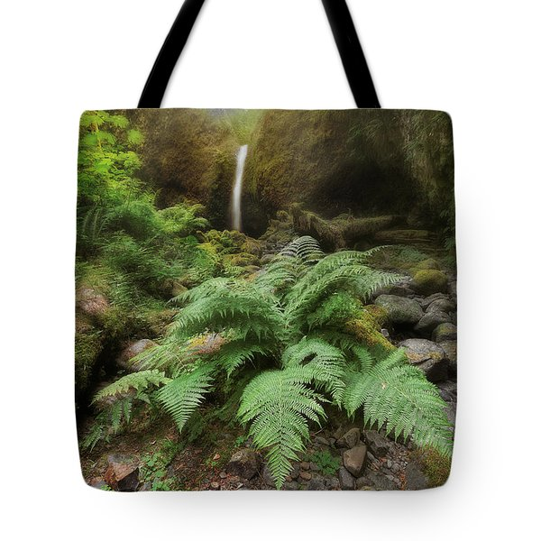 Jurassic Forest Tote Bag by David Gn
