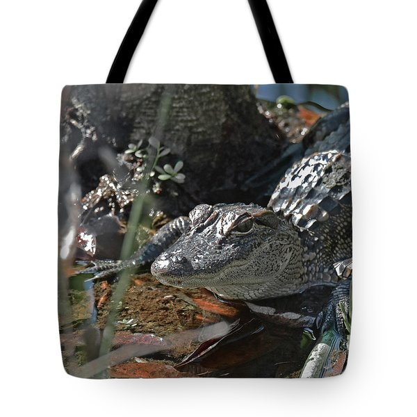 Tote Bag featuring the photograph Just A Baby by Sally Sperry