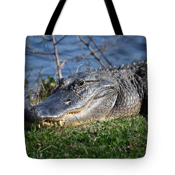 Just A Few Steps Closer Dear Tote Bag by Roena King