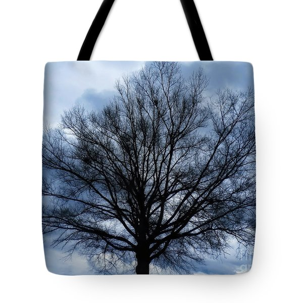 Just A Gray Blue Day Tote Bag