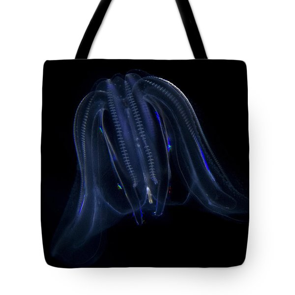 Tote Bag featuring the photograph Just A Jellyfish by Jeremy Martinson