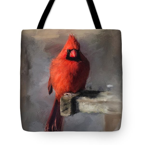Just An Ordinary Day Tote Bag