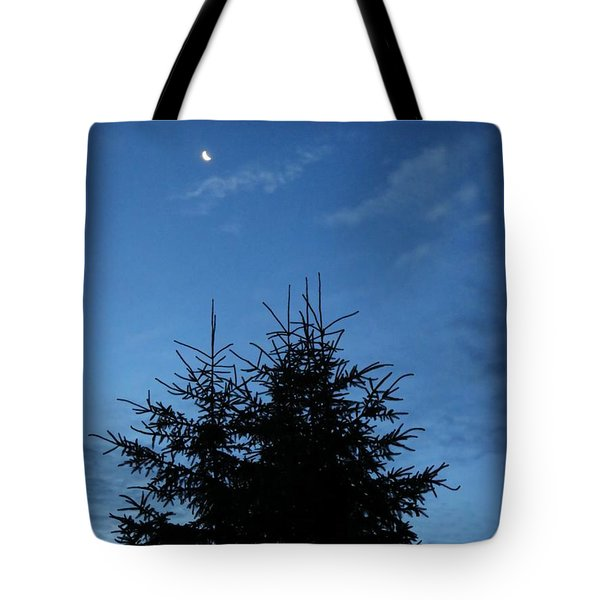Tote Bag featuring the photograph Just Before Sunrise by Robin Regan