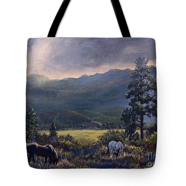 Just Before The Rain Tote Bag