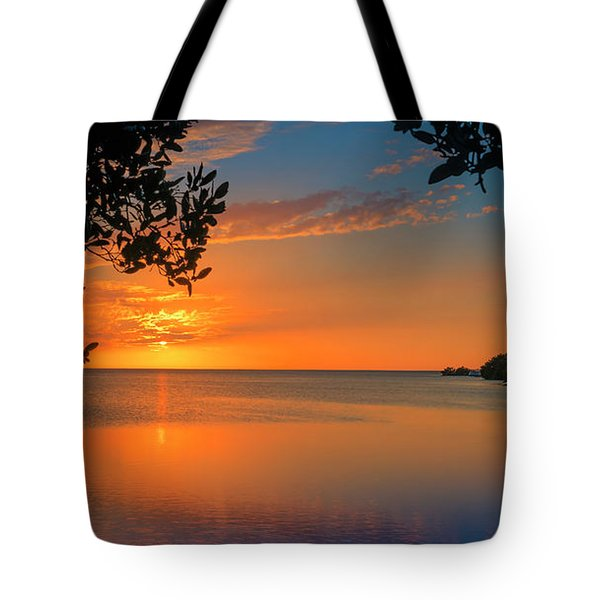 Just Beyond The Window Tote Bag