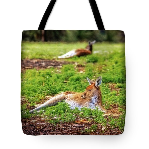 Tote Bag featuring the photograph Just Chillin, Yanchep National Park by Dave Catley