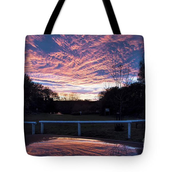 Just Had To Stop Tote Bag by David  Hollingworth