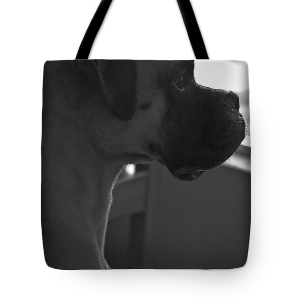 Just Handsome Tote Bag by DigiArt Diaries by Vicky B Fuller