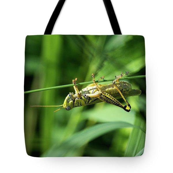 Just Hangin Around Tote Bag