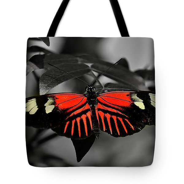 Just Hanging Around Tote Bag by Deborah Klubertanz