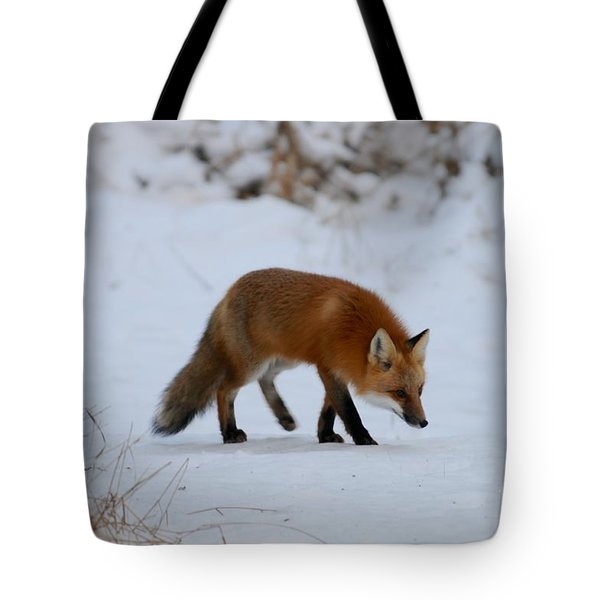 Just Hunting For Breakfast Tote Bag by Sandra Updyke