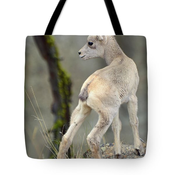 Tote Bag featuring the photograph Just Kidding Around by Bruce Gourley