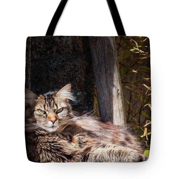 Just Lazing Around Tote Bag