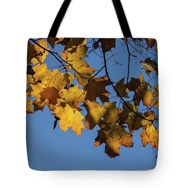 Just Leaves Tote Bag