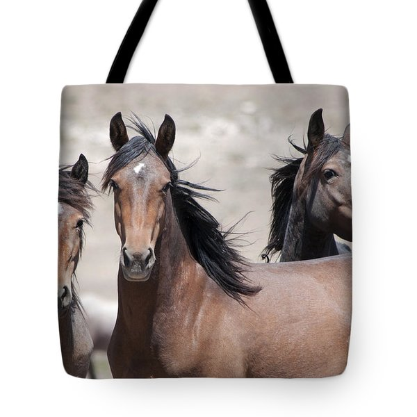 Tote Bag featuring the photograph Just Looking by Lula Adams