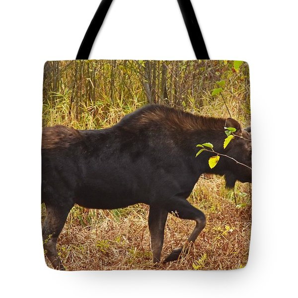 Just Passing Trhough Tote Bag