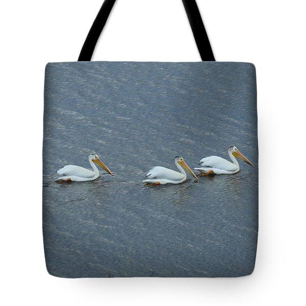 Triple Pelicans Lake John Swa Co Tote Bag