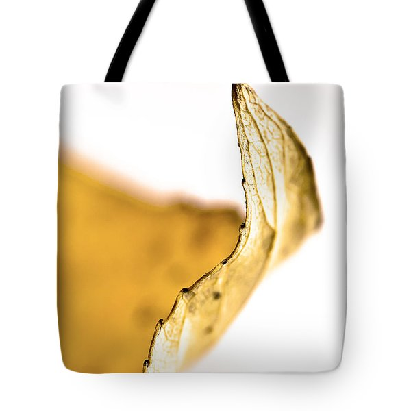 Just The Edge Tote Bag by Sandra Foster