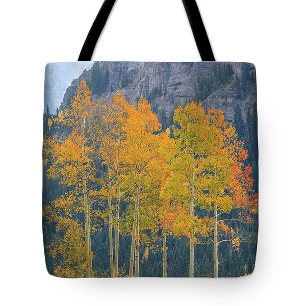 Tote Bag featuring the photograph Just The Ten Of Us by David Chandler