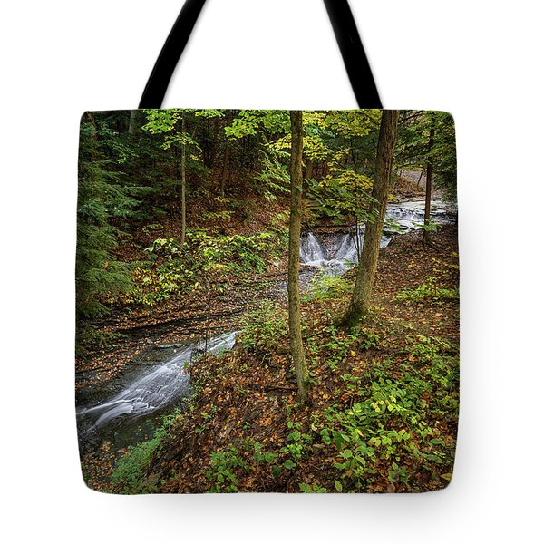 Tote Bag featuring the photograph Just To Be by Dale Kincaid