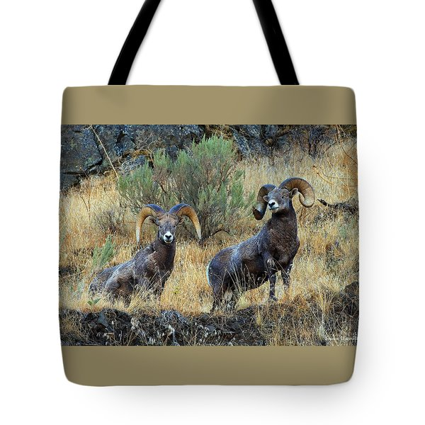 Just Us Tote Bag by Steve Warnstaff