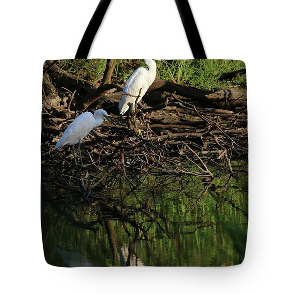 Juv Little Blue Herons Two Tote Bag