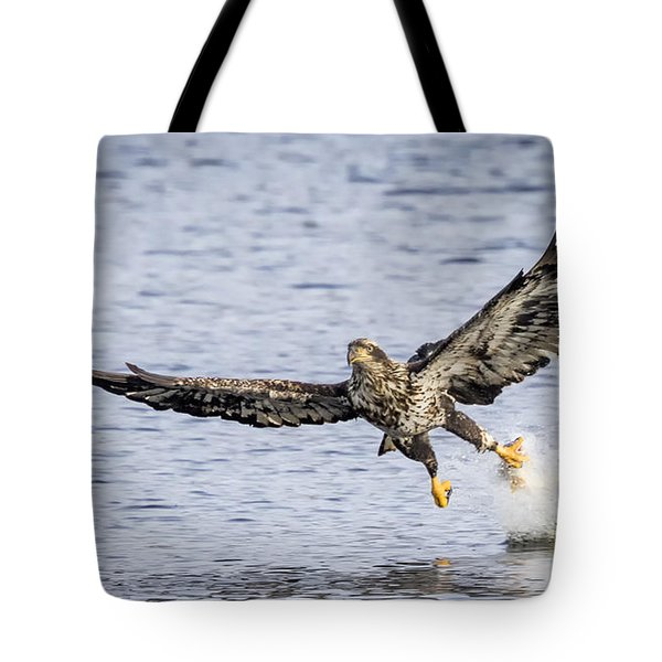 Juvenile Bald Eagle Fishing Tote Bag