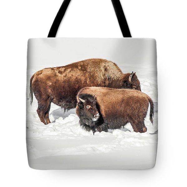 Juvenile Bison With Adult Bison Tote Bag