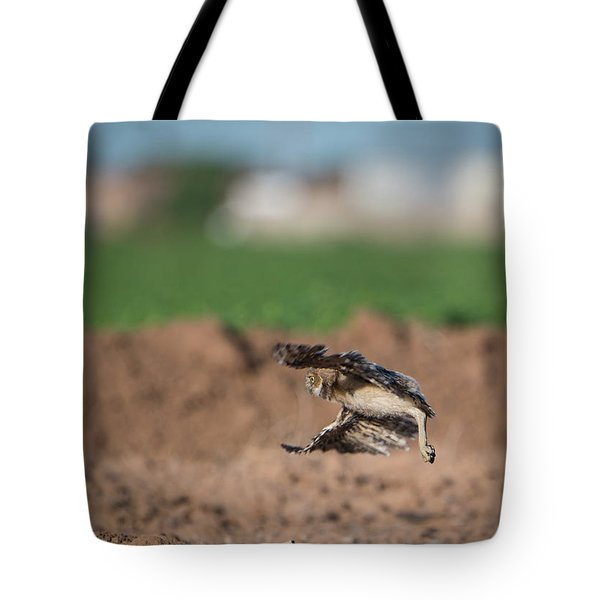 Juvenile Burrowing Owl Testing Out His Wings Tote Bag