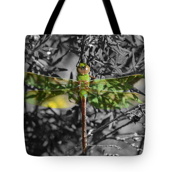 Tote Bag featuring the pyrography Juvenile Green Darner by Sally Sperry
