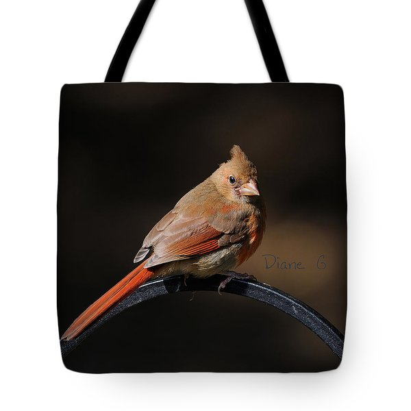 Juvenile Male Cardinal Tote Bag