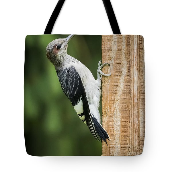 Tote Bag featuring the photograph Juvenile Red Headed Woodpecker by Ricky L Jones