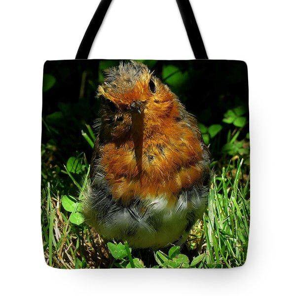 Juvenile Robin 2 Tote Bag by John Topman