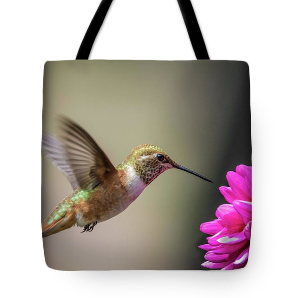 Juvenile Rufous Hummingbird And Pink Dahlia Tote Bag