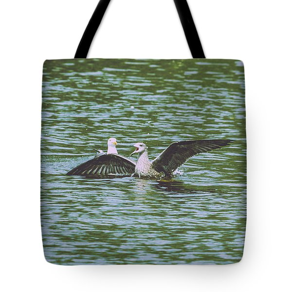Tote Bag featuring the photograph Juvenile Seagull In A Water by Jacek Wojnarowski