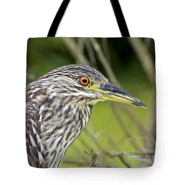 Juvi Black-crowned Night Heron Tote Bag