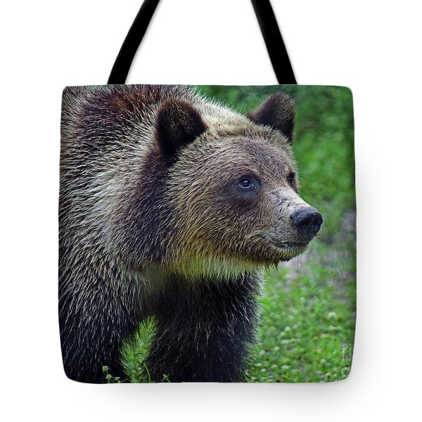 Juvie Grizzly Tote Bag by Larry Nieland